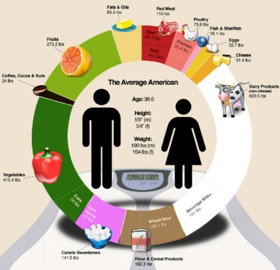average american diet